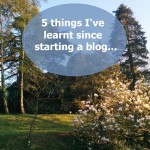 5-things-I've-learnt-since-starting-a-blog
