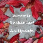 summer-bucket-list-an-update