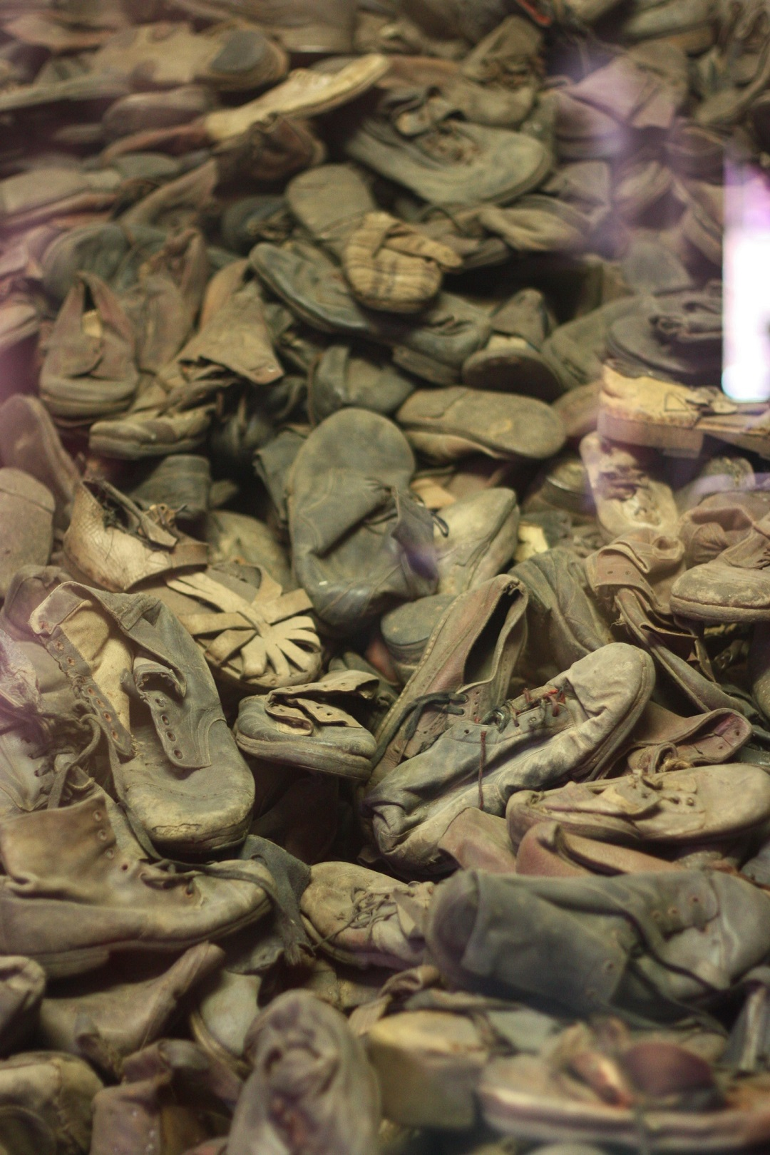 Auschwitz Birkenau 13