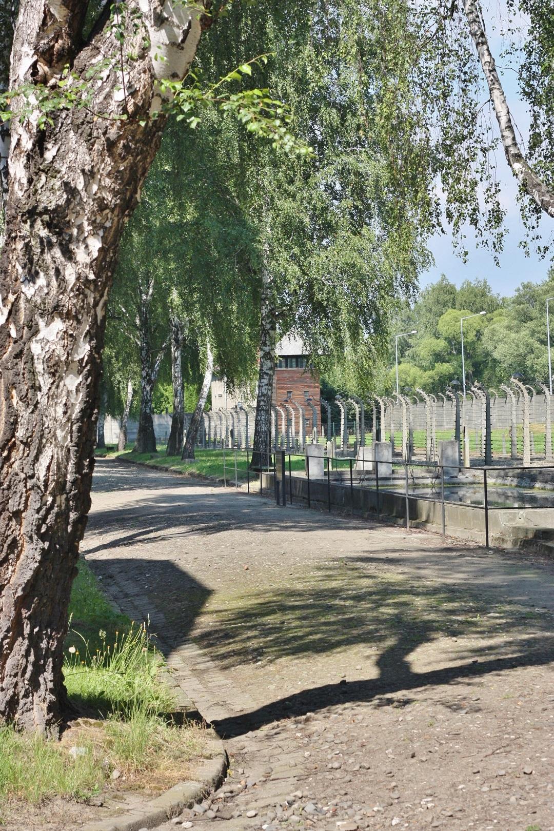 Auschwitz Birkenau 18