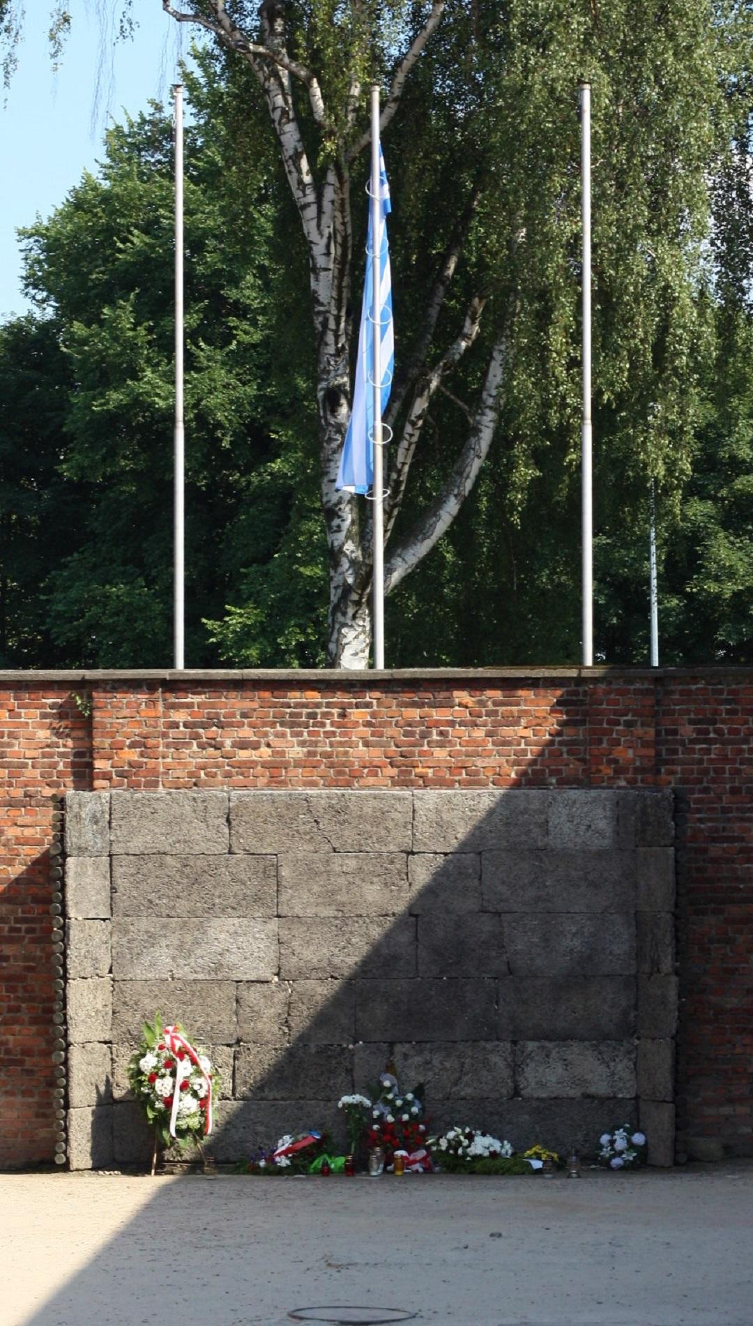Auschwitz Birkenau 22