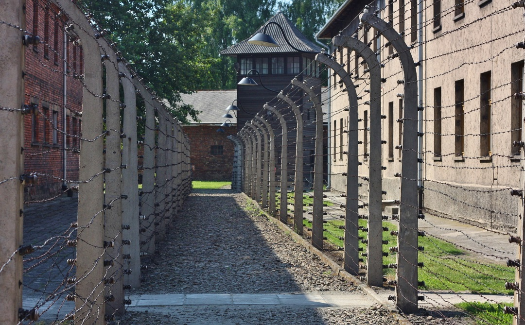 Auschwitz Birkenau 24