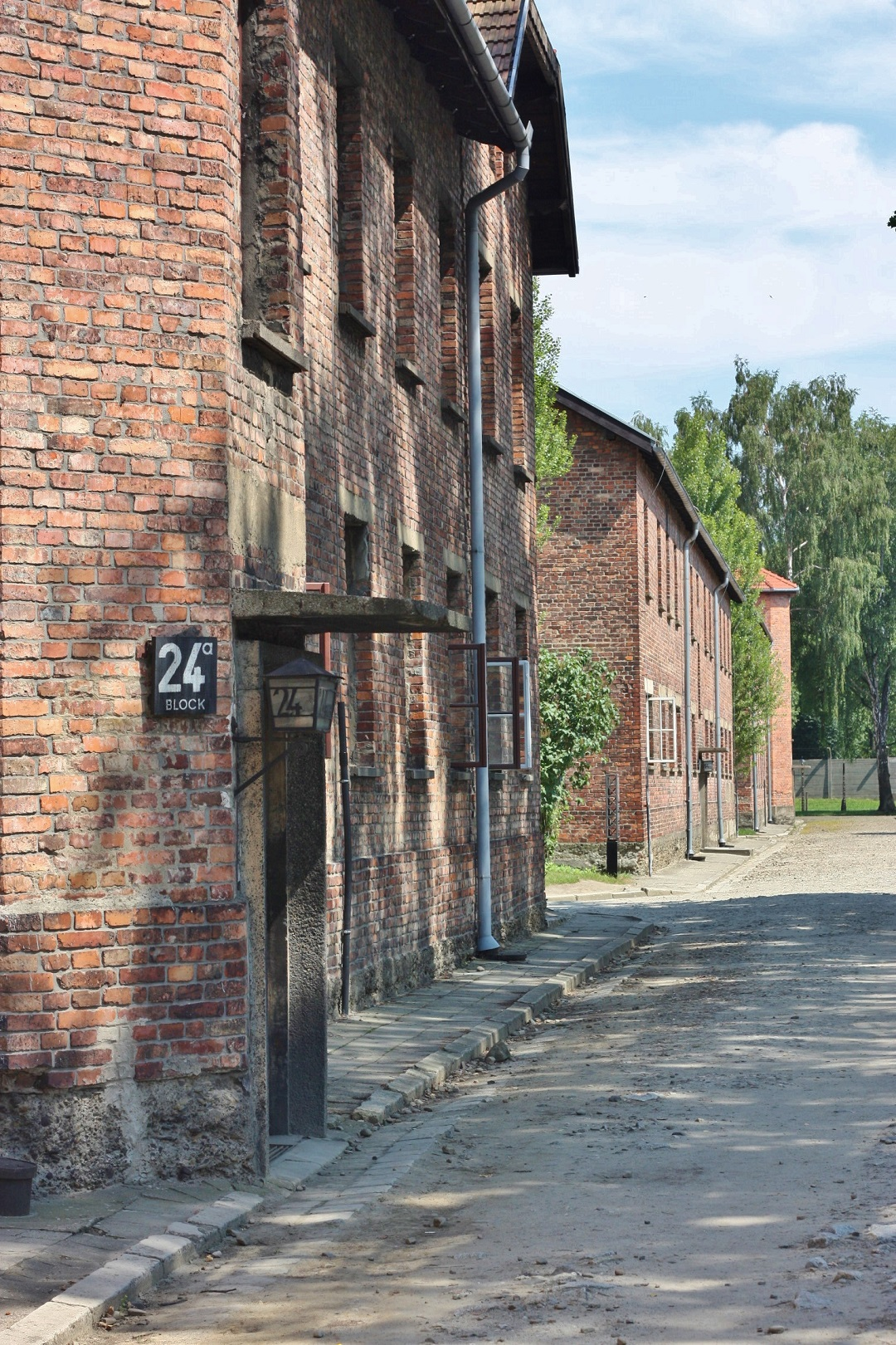 Auschwitz Birkenau 6