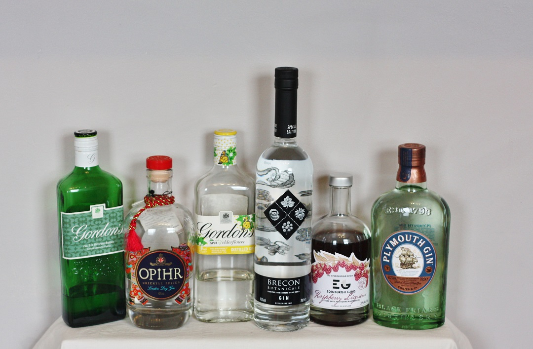 10 Reasons to drink more gin 2