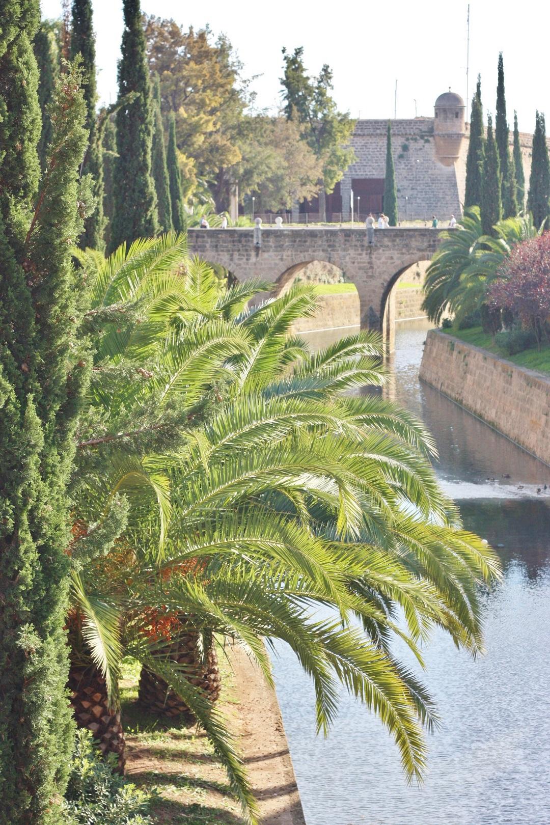 Autumn Adventures in Mallorca 13