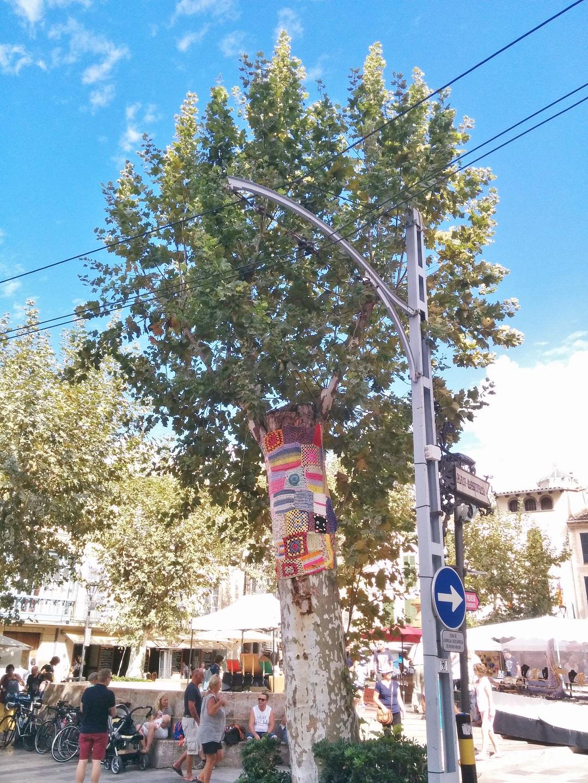 Autumn Adventures in Mallorca 25