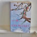 Book Review Salem Falls Jodi Picoult 1