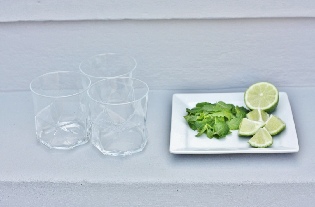 How to make the perfect cocktail The Mojito 3
