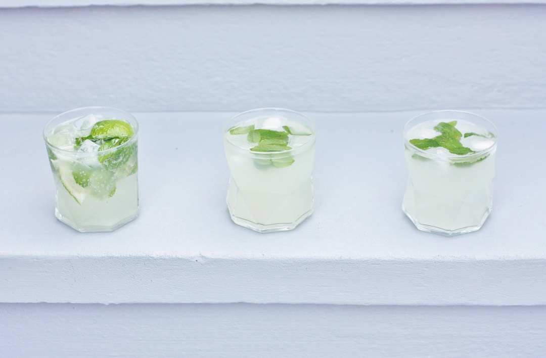 How to make the perfect cocktail The Mojito 4
