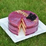 Bake Off Bake Along 2016 Cake Week