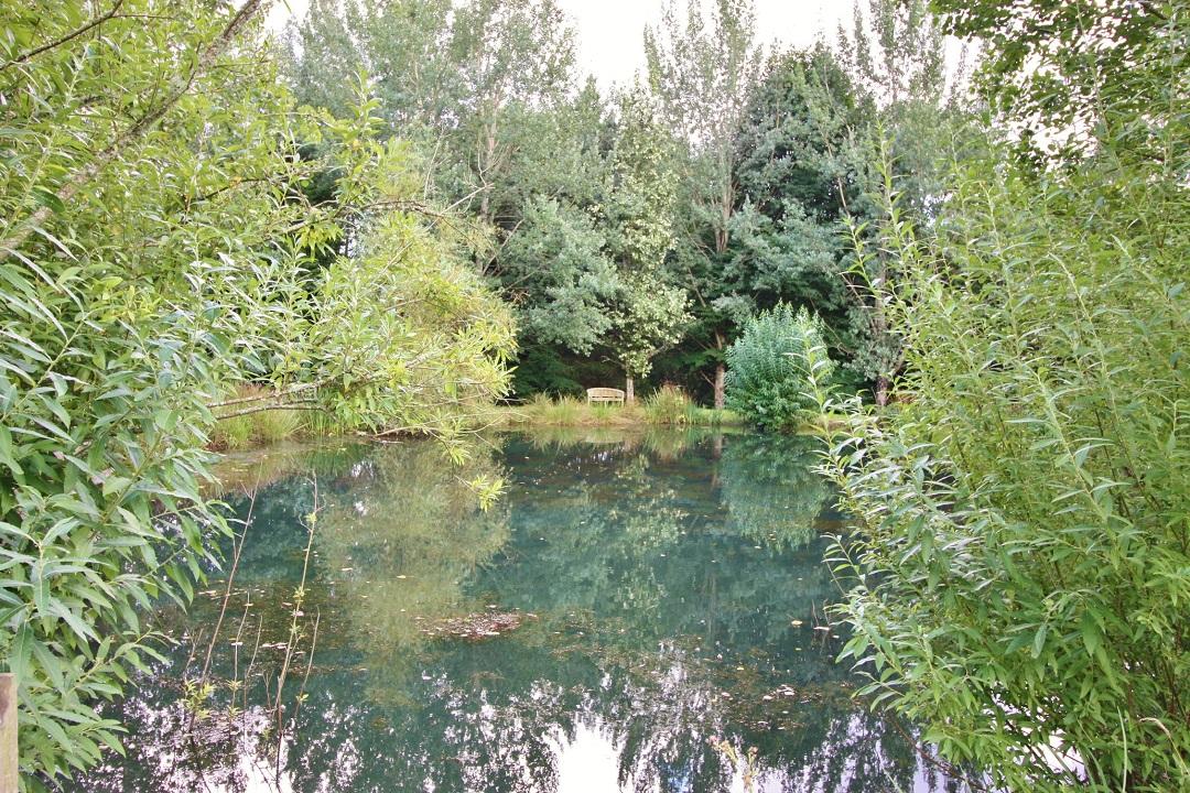 canonteign-falls-alice-bayfield-16