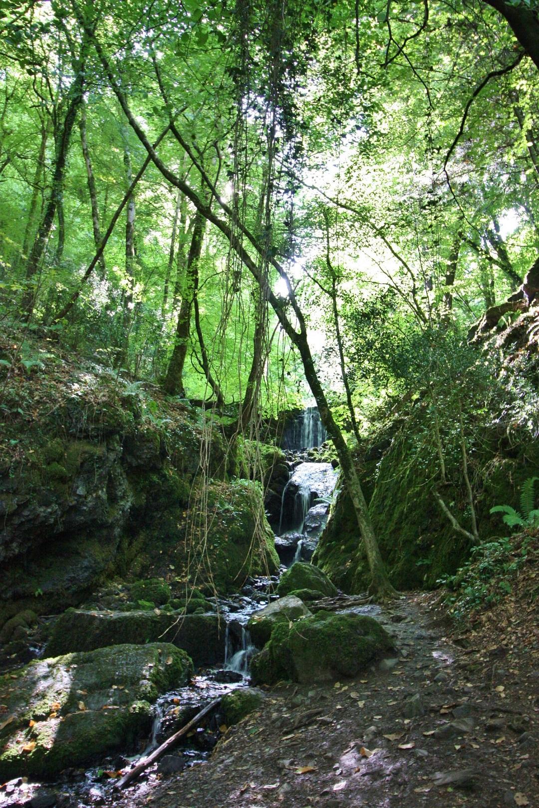 canonteign-falls-alice-bayfield-8