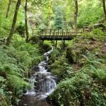 canonteign-falls-alice-bayfield-9