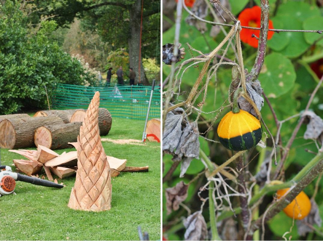 autumn-woodfest-rhs-rosemoor-16
