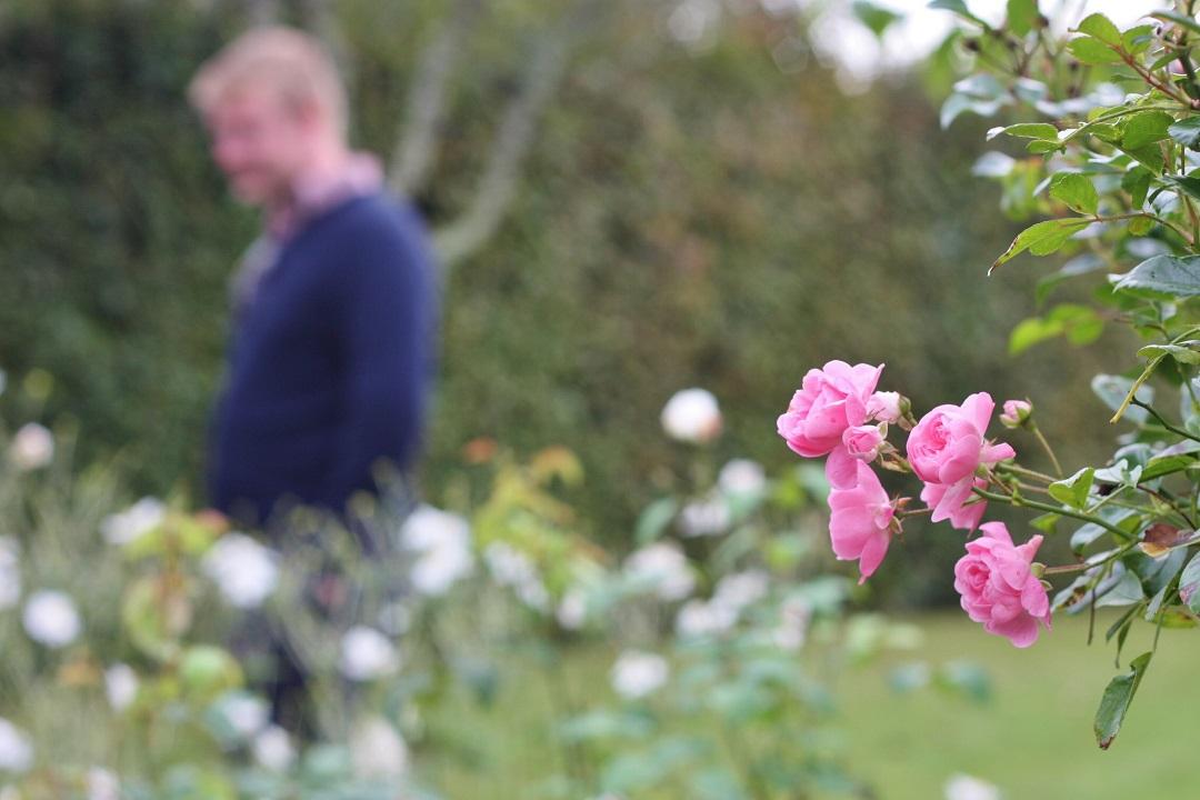 autumn-woodfest-rhs-rosemoor-18