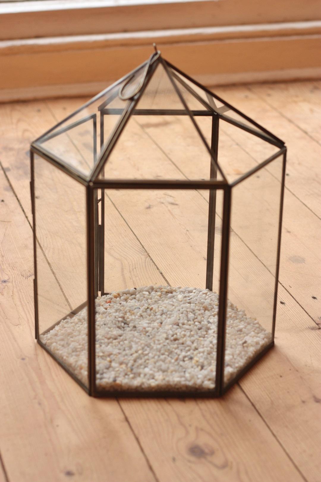 DIY terrarium 1