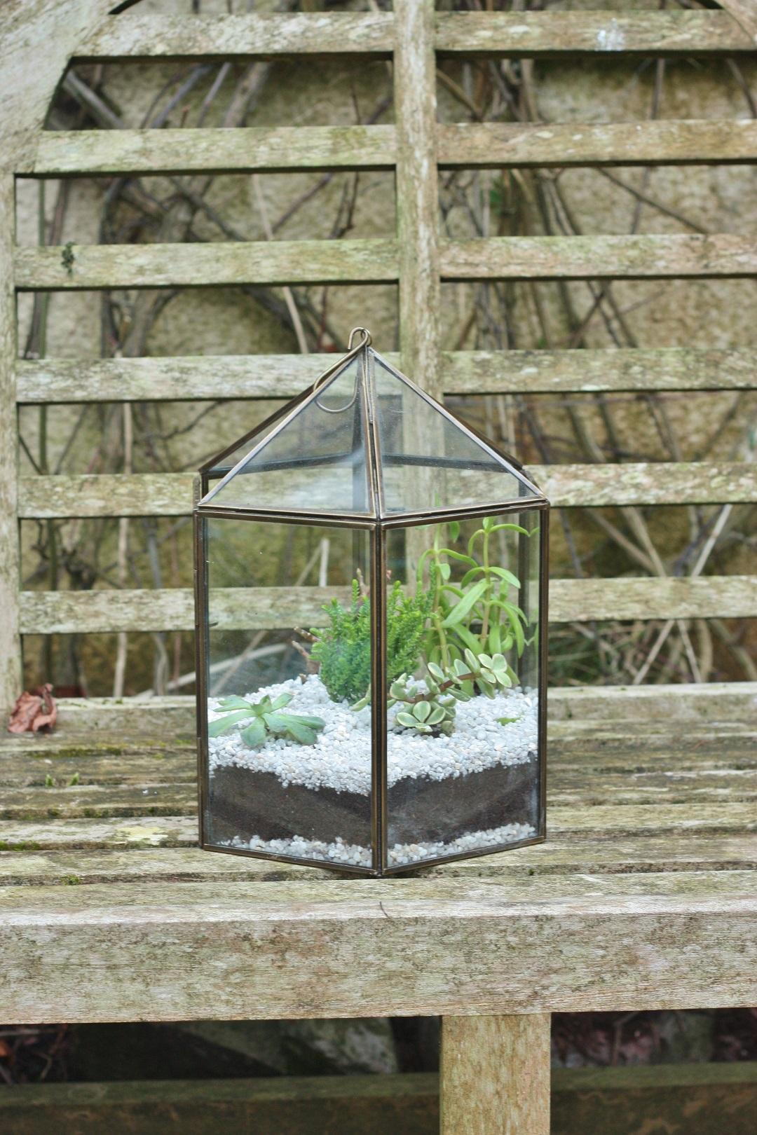 DIY terrarium 9
