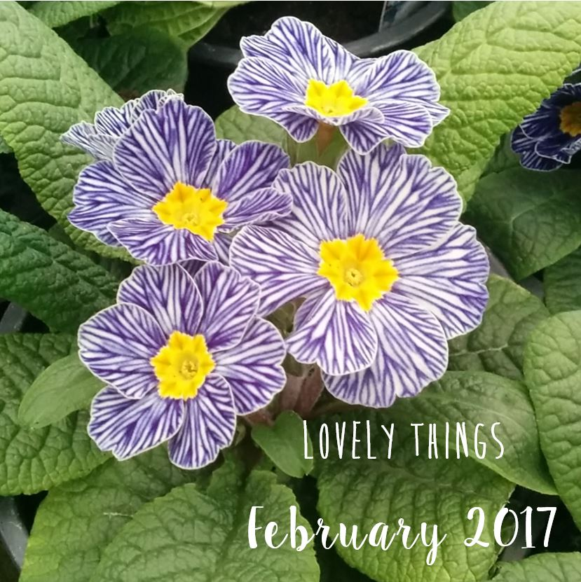Lovely Things February 2017